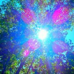 Bright Thing EP
